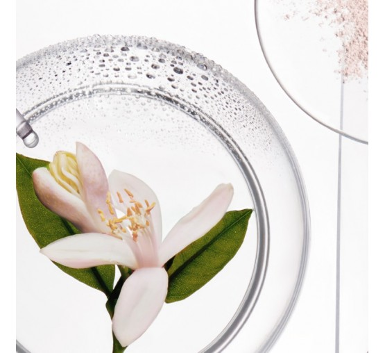 Fresh Affair Refreshing Dry Shampoo